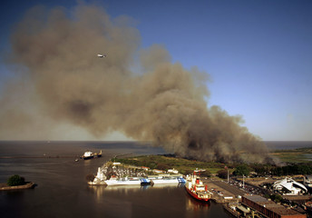 Smoke rises over a nature reserve on the shores of River Plate near downtown Buenos Aires