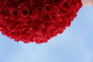 red rose carnation
