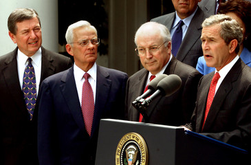 BUSH TALKS ABOUT FIRST SIX MONTHS OF HIS ADMINISTRATION WITH CABINETMEMBERS.