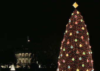 The National Christmas Tree glistens with the White House in the background in Washington