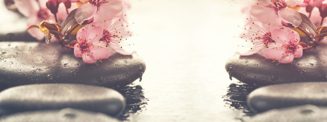 Beautiful pink Spa Flowers on Spa Hot Stones on Water Wet Background. Side Composition. Copy Space. Spa Concept. Bright Background.
