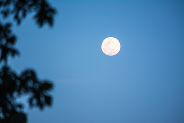 The Moon is an astronomical body that being Earth's only permanent natural satellite.