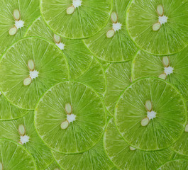 Background made of fresh ripe lime slices
