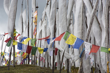 Asia, Bhutan, Chen La Pass, prayer flags. Prayer flags on Chen La Pass