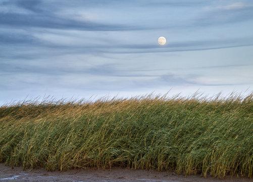 USA, Massachusetts, Cape Cod, Full moon rising at First Encounter Beach