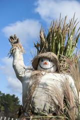 USA, Massachusetts. Decorative scarecrow.