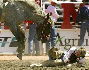 Cowboy is chased by horse during Novice Bareback event at the Calgary Stampede