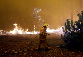 FIREFIGHTERS MAKE CONTAINMENT LINES AS BUSHFIRES CONTINUE TO BURN NEARSYDNEY.