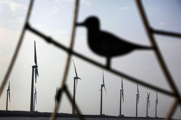 A silhouette of a bird statue is seen near wind turbines that generate electricity in Gaomei Wetland in Taichung