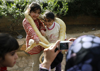 Palestinian girls have their picture taken with a snake in Ramallah