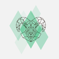 Mountain sheep head geometric lines silhouette isolated on a green rhombus.