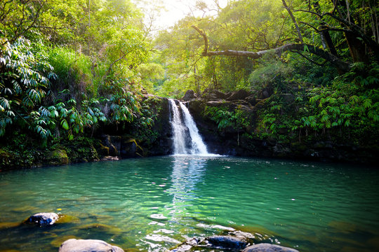 Tropical waterfall Lower Waikamoi Falls and a small crystal clear pond, inside of a dense tropical rainforest, off the Road to Hana Highway, Maui, Hawaii