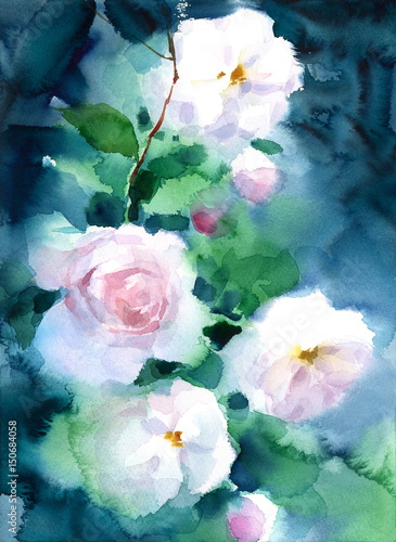 White roses on dark background watercolor flowers floral hand white roses on dark background watercolor flowers floral hand painted greeting card illustration m4hsunfo