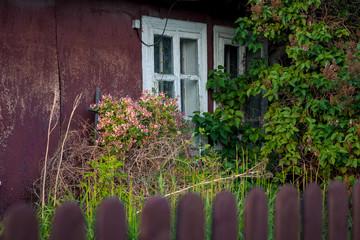 okna chaty