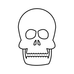 human skull bone care healthy line vector illustration
