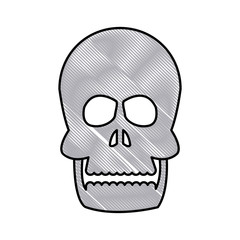 drawing human skull bone care healthy vector illustration