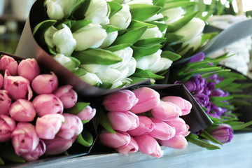 Colorful tulips in flower shop
