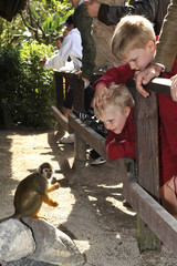 Belgium's Prince Emmanuel (L) and his brother Prince Gabriel look at a monkey during a visit to Parc Paradisio zoo in Brugelette