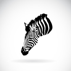 Vector of an zebra head on white background. Wild Animals.