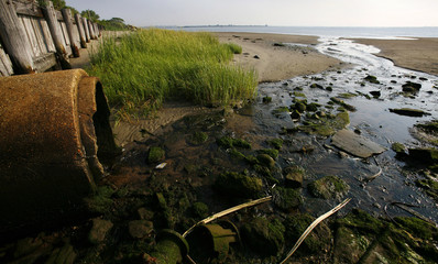 Pipe drains into Jamaica Bay at Gateway National Park in Brooklyn New York where study shows wildlife-rich saltwater marsh islands are rapidly dissapearing