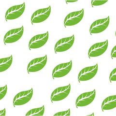 Leaf ecology symbol icon vector illustration graphic design