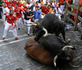 Miura bulls fall at the Estafeta corner on the sixth day of the running of the bulls at the San Fermin festival in Pamplona