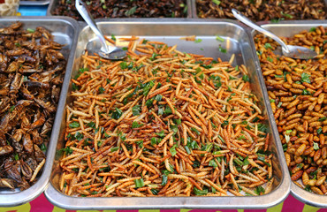 Fried insects, Thailand famous street food.