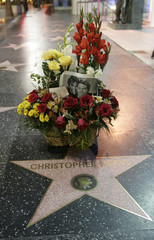 Flowers and photograph of Dana and Christopher Reeve are placed on Hollywood Walk of Fame star