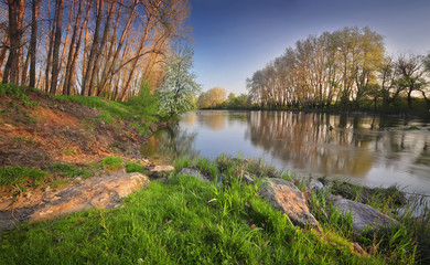 Photo sur Plexiglas Riviere Spring river morning landscape.
