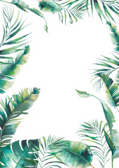 Watercolor summer floral frame. Hand drawn greeting card design with exotic leaves and branches isolated on white background. Palm tree, banana leaves, mostera plants
