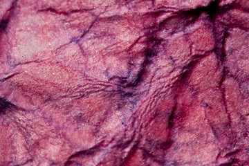 Ripped and Wet Painted Paper Texture