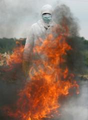 Health worker burns duck that was found dead near chicken farm affected by bird flu in Siberian ...
