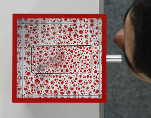 An employee of Japanese mobile phone carrier KDDI looks through a scope attached to a box housing a mobile phone designed by Japanese artist Yayoi Kusama in Tokyo