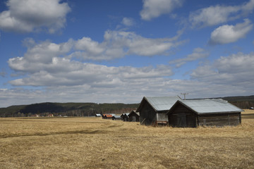 Lot of barns standing in a row on a field