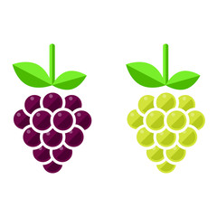 grapes vector set