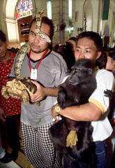 Filipino owners of an Indian python, turtle, and black ape wait for a priest to bless their pets in ..