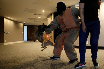 People take part in BOPE police drill simulating a robbery with hostages in hotel in Rio de Janeiro