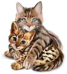 Cat hugs kitten watercolor painting