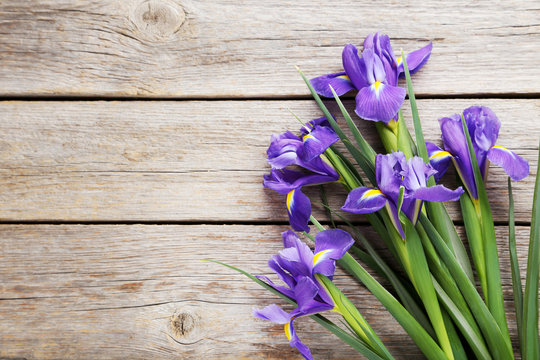 Bouquet of iris flowers on grey wooden table