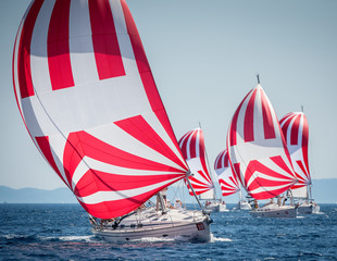 Fleet of sailing boats with spinnaker during offshore race