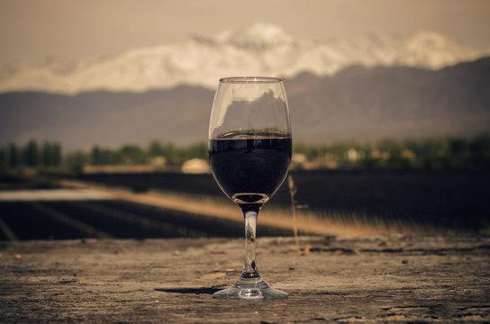 Vinos de Cordillera