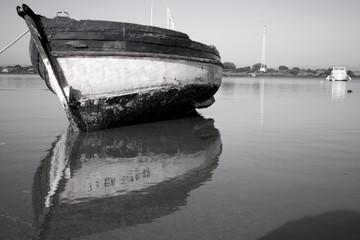 Barca viva