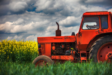 Wall Mural - Red tractor in a field