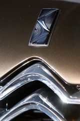 The new DS logo is seen on a concept car unveiled by french car maker Citroen during a news conference in Pari