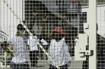 File photo of migrants standing behind the main gate of a holding centre on the Mediterranean island of Lampedusa