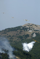 Fire fighting aeroplanes drop water over a forest fire at Inoi village northwest of Athens