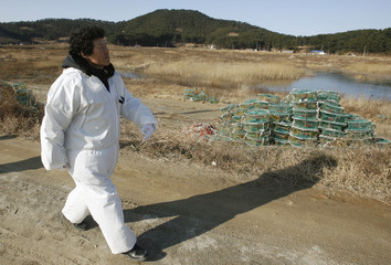 A woman resident from Taean walks past unused crab pots at her village in Taean