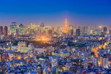 Tokyo, Japan Aerial View