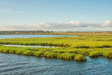 Bolsa Chica Wetlands, Huntington Beach in Southern California