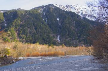 Fototapeten Aubergine lila 上高地、梓川とケショウヤナギ